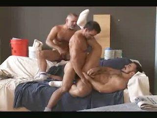 3 daddy bears