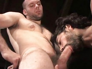 Soft Muscular Studs Fucking With Style