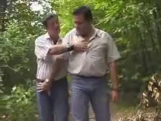 Chunky bears in woods