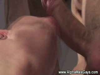 Studs swell up eachothers nipples and dick
