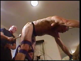 Lady's man is tied up plus attractiveness over with his authority abusing his pest